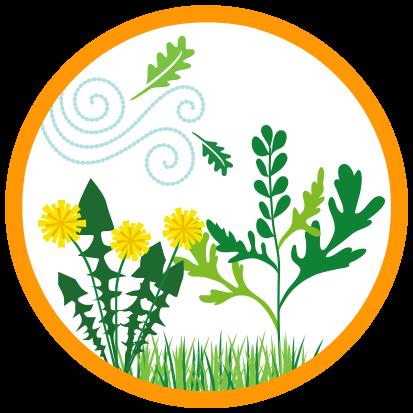 Ícono de césped, ambrosía y polen