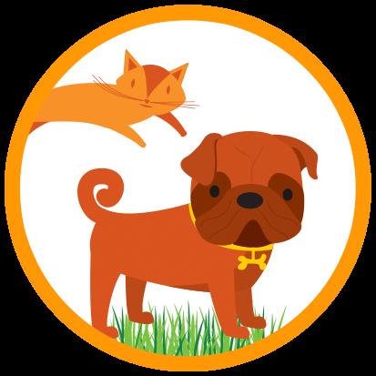 Gato y perro con caspa animal