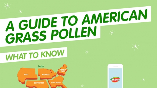 American Grass Pollen Allergy Guide from ZYRTEC®