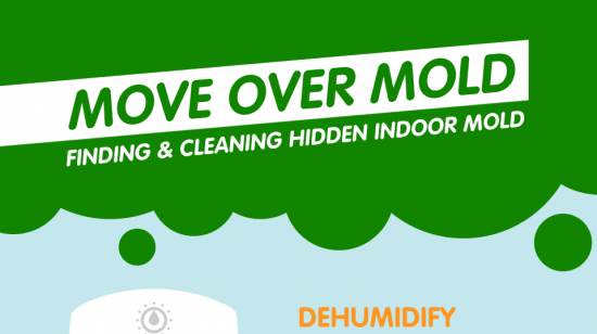 How to Check for & Remove Mold