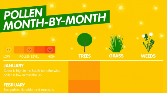 ZYRTEC® Pollen Type Month-By-Month Guide